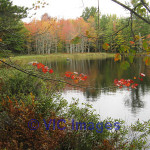 2 Acre Back Lake Lot Beautiful Annapolis Valley Halifax, Nova Scotia, Canada Classifieds